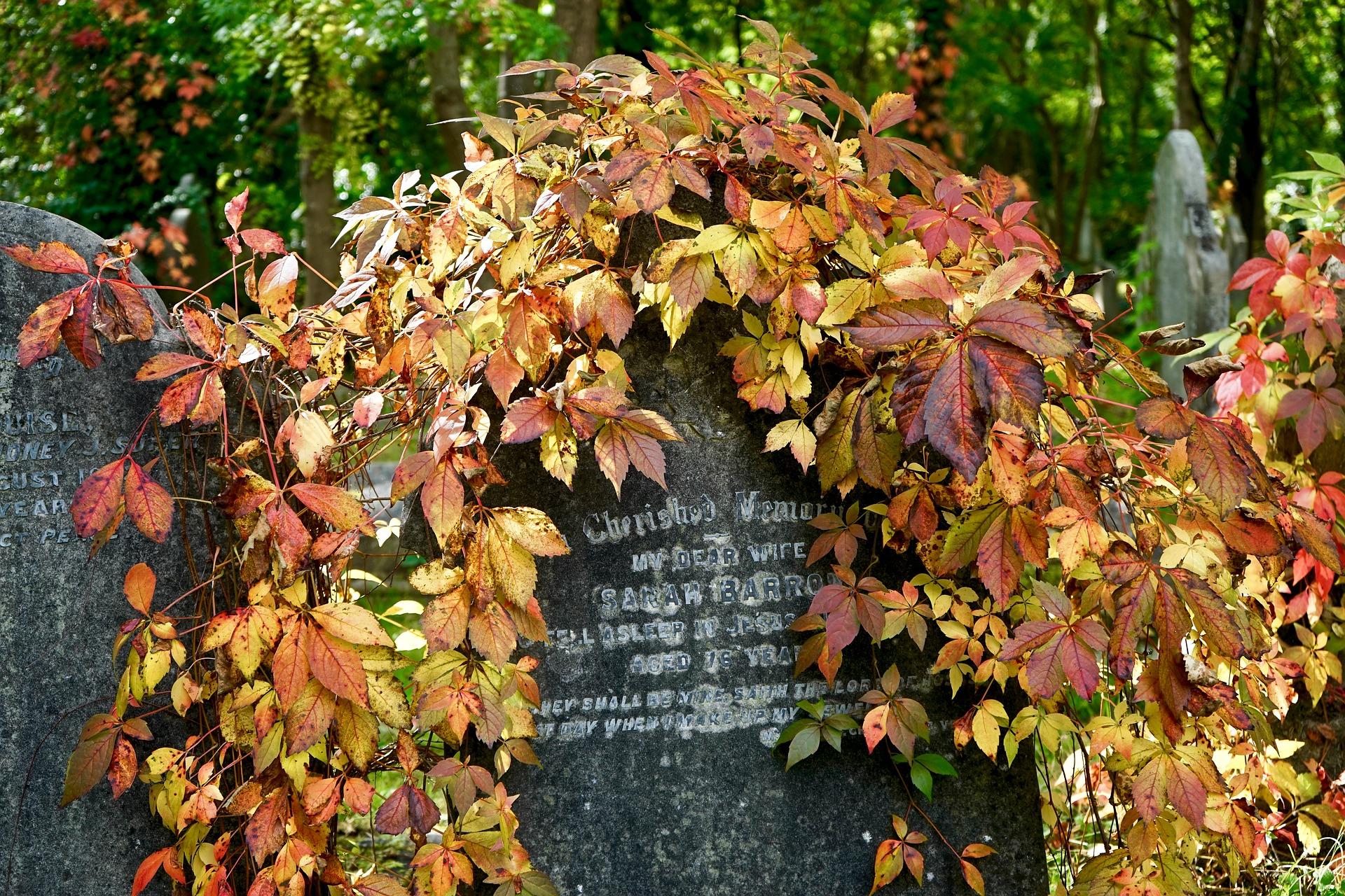 Inhumation enterrement