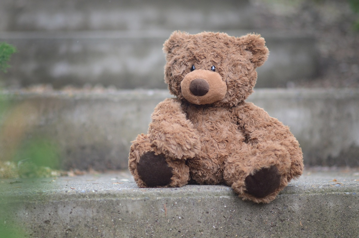 izzy-bear-ours-peluche-nounours