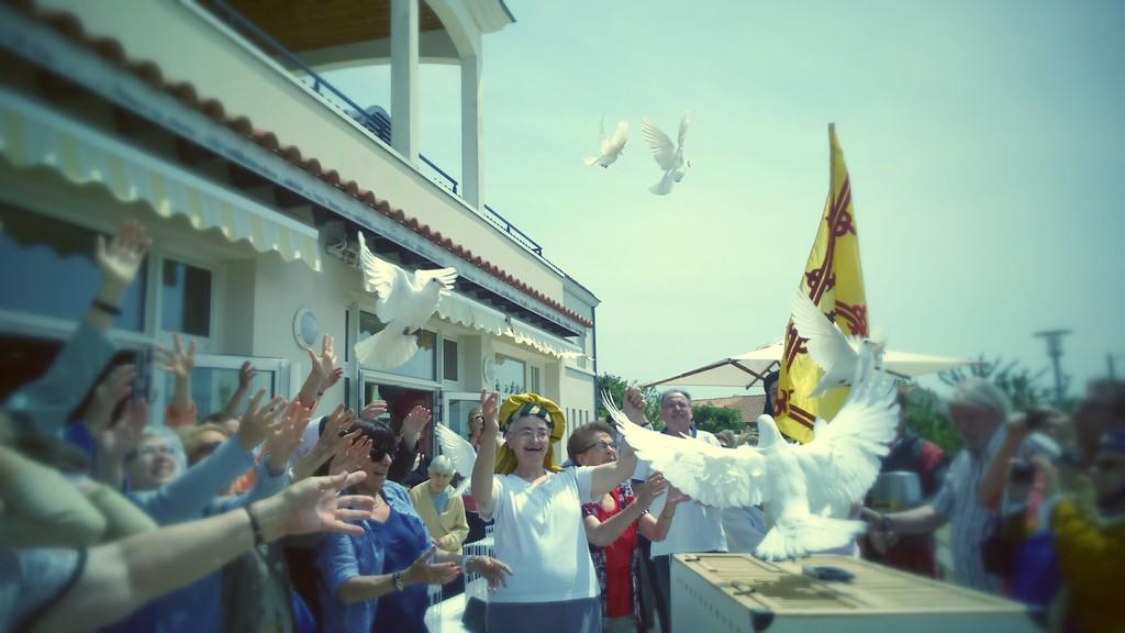 Les colombes de la paix entreprise lacher de colombes enterrement